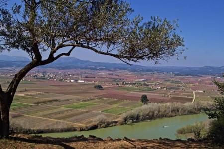 Primavera a Mora d'Ebre