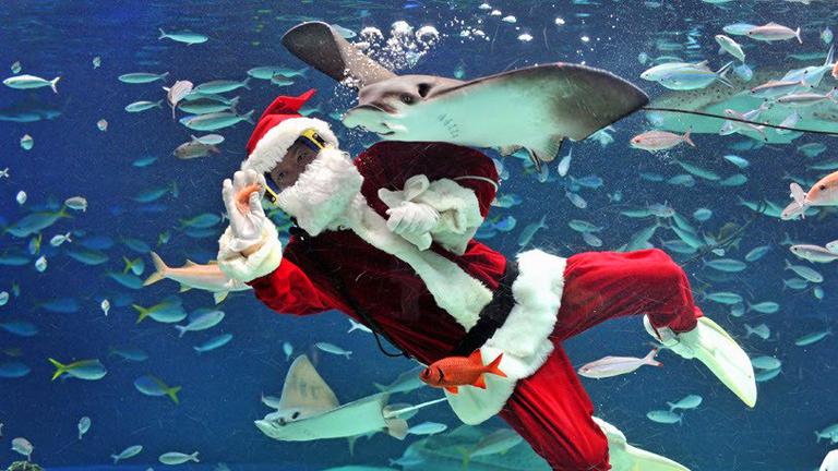 Festes de Nadal arreu del món (part II)